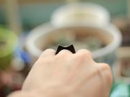 猫与鱼的故事 黑檀戒指