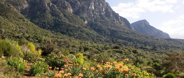 全球十大最美植物园——去寻一份心旷神怡的宁静 (全球花木网刊)