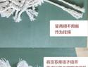 MAYIN FRIDAY macrame圣诞 编织雪花挂饰 杯垫
