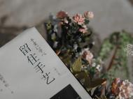 我的小花园:书与花的世界