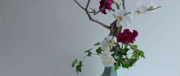 清新自然的美丽插花  Kaihua Flower