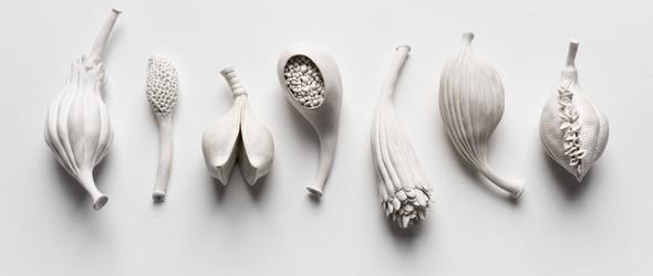 明明是纺织艺术家,却选择陶艺来变现植物果实的丰饶 | Sarah Rayner
