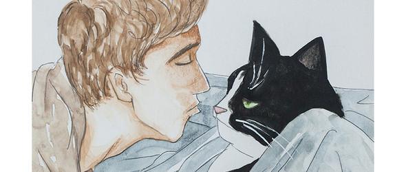 cat story(4)