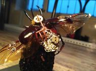 蒸汽昆虫,亚特拉斯南洋大兜