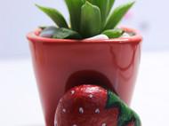 石头画——草莓