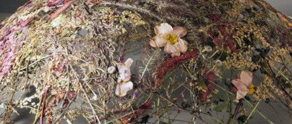 是娇弱也是美艳|艺术家Ignacio Canales Aracil的野花雕塑