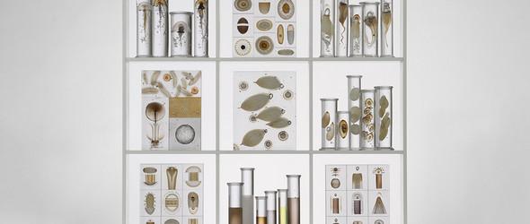 Champur Design/游走于理性与感性之间的玻璃诗人 · Steffen Dam