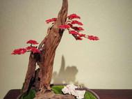 『云崖.桃夭』新中式崖柏盆景,创意摆件,微景观,创意盆景。
