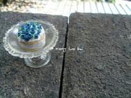 蓝莓蛋糕和冰淇淋华夫饼~