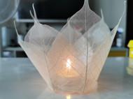 一盏树叶制作的灯