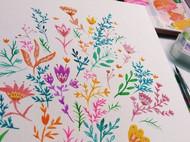 插画师的花花世界