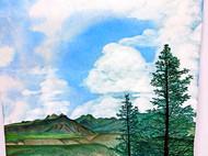 山,杉和云