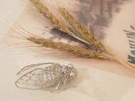 法式刺绣昆虫-新蝉