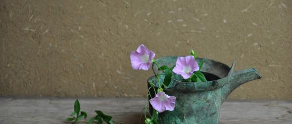 花与花器的和谐之美 - 日本花道作品欣赏