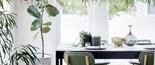 Color Inspiration|苔绿色,轻快舒适的自然色