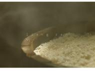 手工酿造的古法米酒