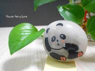 石头小熊猫