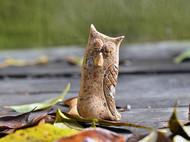 柴烧·猫头鹰