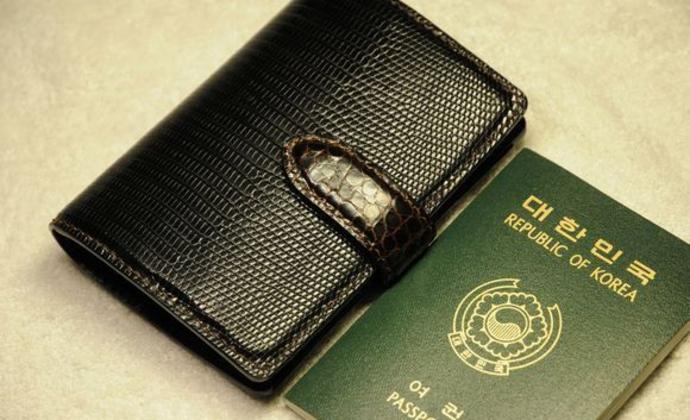 蜥蜴皮撞色鳄鱼皮护照夹