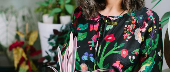 植物太难养?那就用纸做! | 艺术家 Corrie Beth Hogg 以纸张重新还原植物