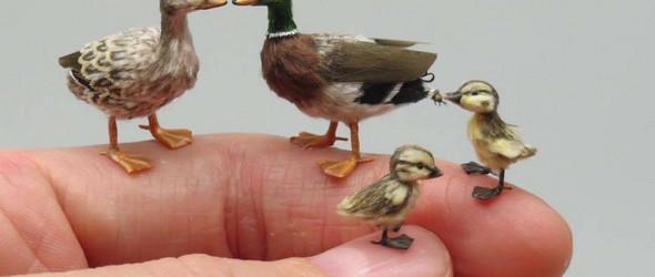 比指甲还小的超迷你微缩动物,哪一只萌到你? | Fanni Kovács Sándor