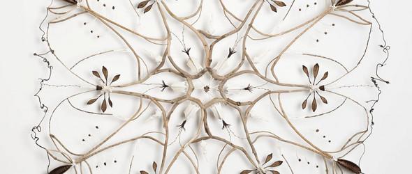 Shona Wilson | 独特的有机的曼荼罗自然雕塑