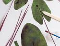 DIY手工纸艺盆栽:手工制作纸艺象耳芋盆栽/滴水观音盆栽(附图纸下载)