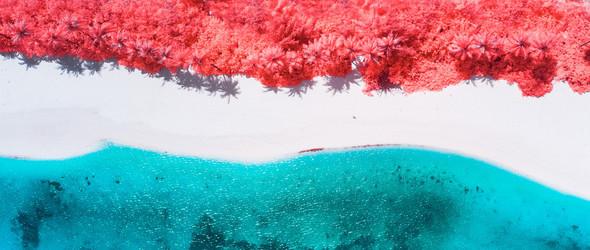红外镜头下的马尔代夫,另有一番美景 | Paolo Pettigiani