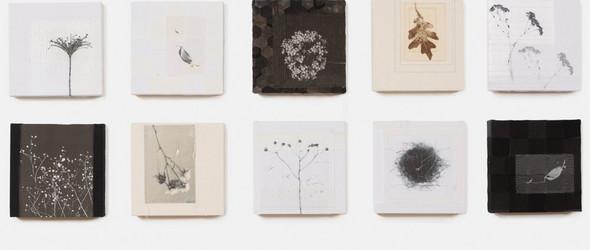 自然的印记 |  Lotta Helleberg