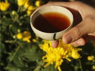 【八九燕来】 茶碗