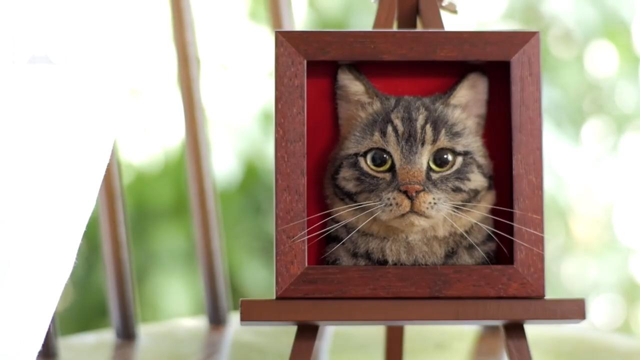 羊毛毡猫猫制作视频之三:动物胡须怎么制作?