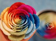 纸艺彩虹玫瑰