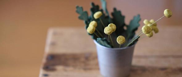 清新自然的布艺植物标本:Chiharu Tauchi