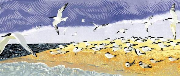 Niki Bowers | 她的版画,只记录家乡的美丽!