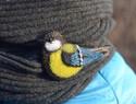 羊毛毡与刺绣结合的山雀配件diy教程