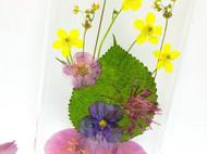 原创手作苹果7plus植物标本真花鲜花永生花手机壳iphone6手工定制