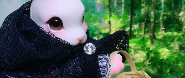 阿默兔子的故事