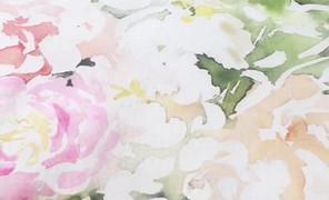Flowerface的广播