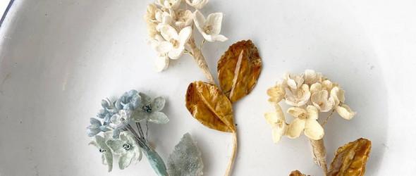 和纸胸花 | Kissmi Wakisaka