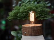【善物】原木木桩台灯 古朴简约不失自然