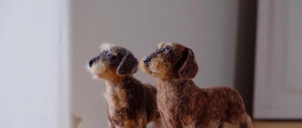 二只腊肠犬狗狗,二只羊毛毡狗狗,这才是爱狗人生的标配 | Harris Reid