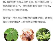 unna酝罗_燕子与柳_天然植物染 纯棉方巾 草木染 手帕 围巾 长款 33*88