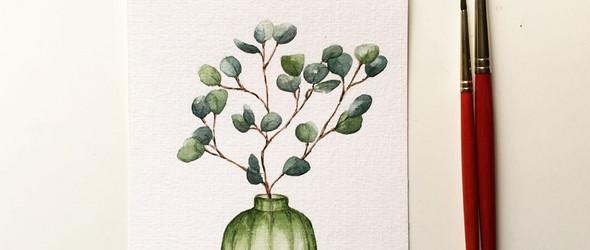 @jolapictures | 手绘植物与花卉(视频)