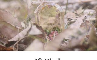 绽放永生之美的浮游花-制作教程