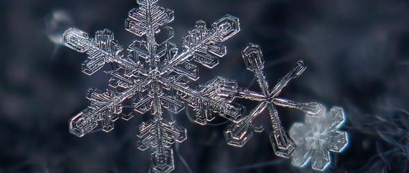 显微镜下的雪花,每一片都是独一无二的晶体