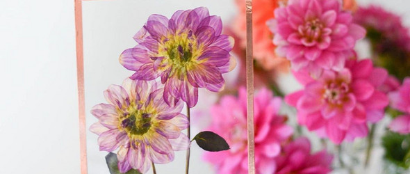 比鲜花更美的押花 | Karly Murphy