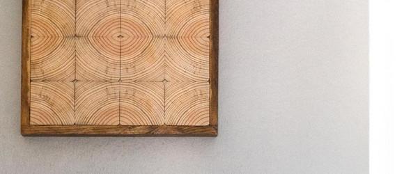独特的树木年轮画 | João Peixe