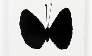 黑白 . 蝴蝶