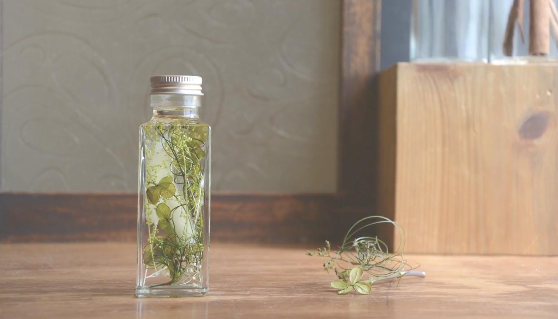 DIY美丽的浮游花植物标本视频教程|Herbarium