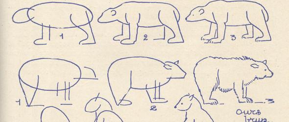 北极熊简笔画——Les Lignes Coudes & Les ours